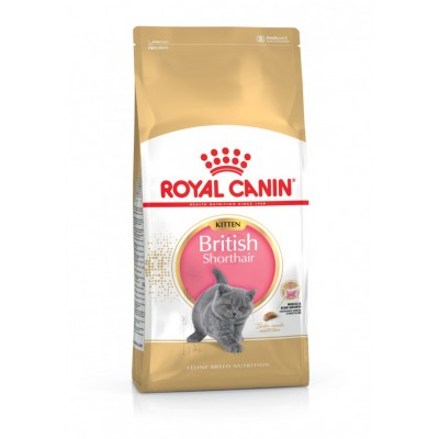 Royal Canin British Shorthair Kitten 400 г